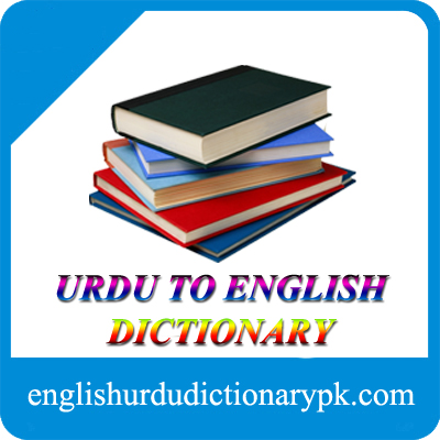 ضد کرنا into English translation and word in English | ڈکشنری